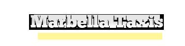 Taxi Malaga Airport to Marbella | Transfers to Puerto Banus, San Pedro, Estepona, Duquesa